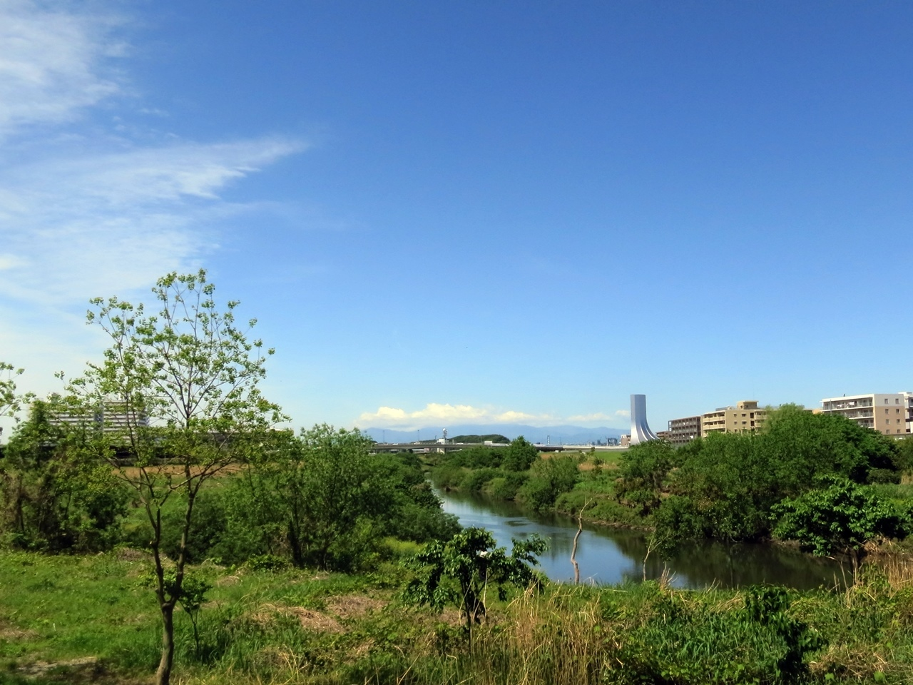 180426鶴見川-05