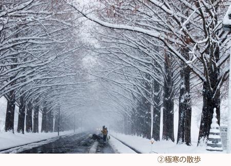 09 極寒の散歩