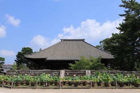 西大寺境内