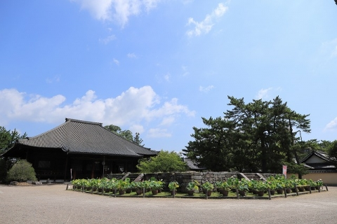 西大寺東塔跡と本堂
