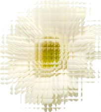 ガーベラ芸術的効果ガラスタイル