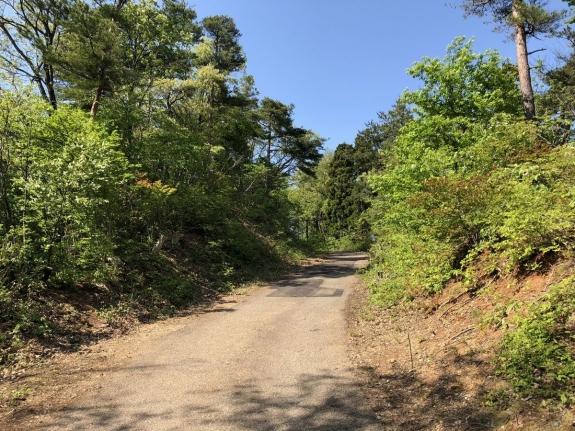 2018-04-26展望台への道