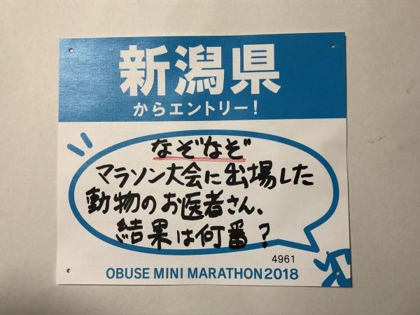 2018-07-14 ゼッケン