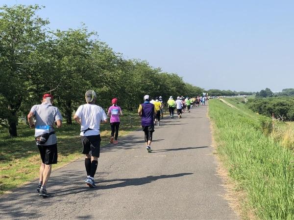 2018-07-15 河川敷道路暑い