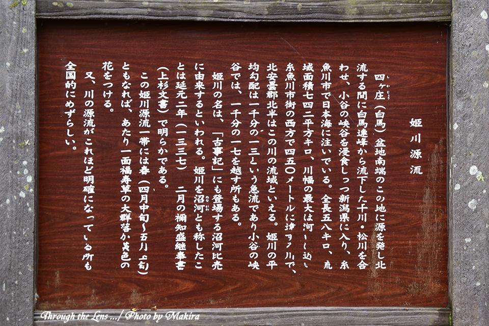 姫川源流56D1