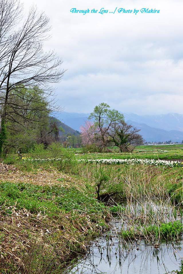 湿原を抜けて56D5