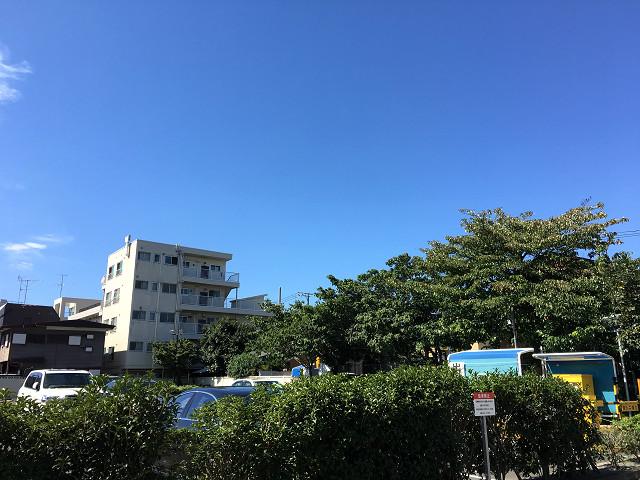梅雨の晴れ間の東京3@2018年6月7日 by占いとか魔術とか所蔵画像