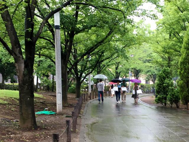 久しぶりに雨で涼しい東京2@2018年7月5日 by占いとか魔術とか所蔵画像