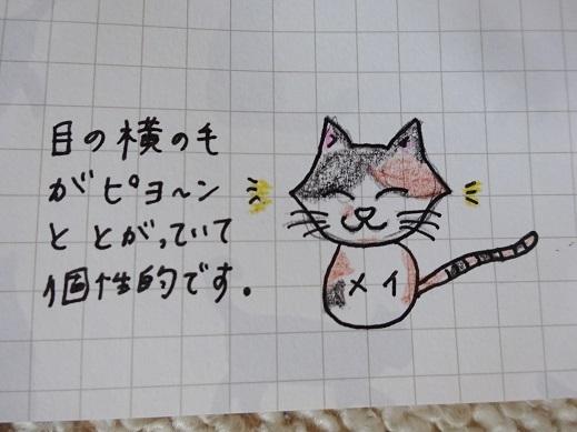 メイ(さや)2