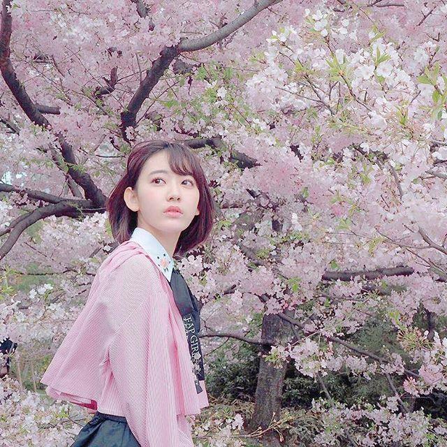 千鳥ヶ淵 宮脇咲良 2018 桜