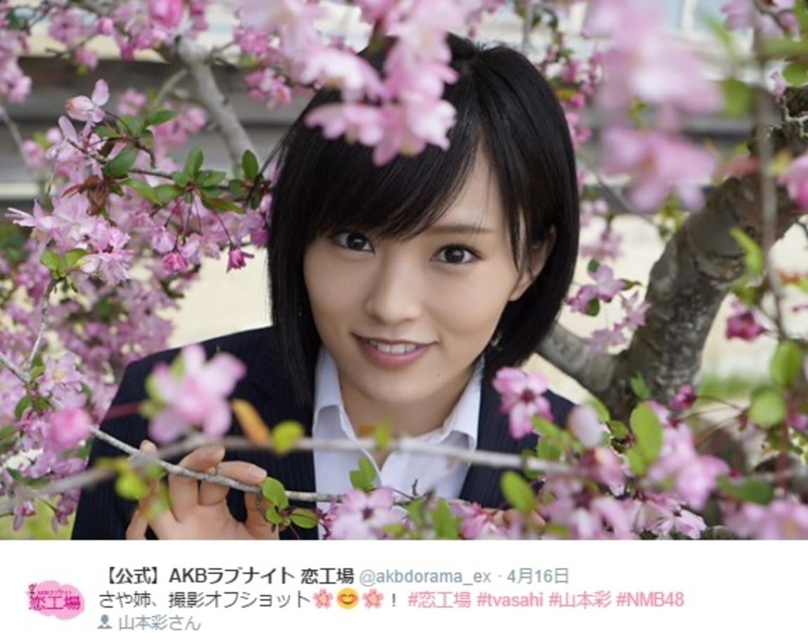 山本彩 2018 桜