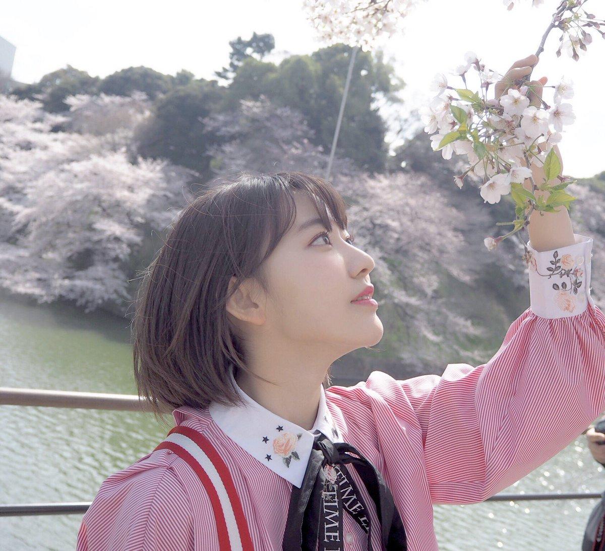 HKT48の宮脇咲良ちゃん『蜷川実花さんに薦められて千鳥ヶ淵と国立劇場前で』 2018 桜 1