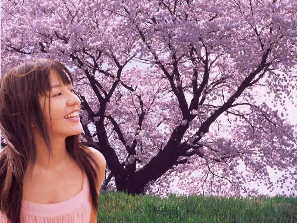 桜満開 長澤まさみ