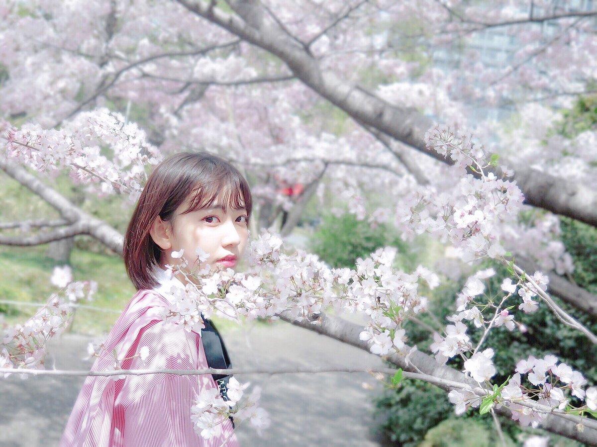 HKT48の宮脇咲良ちゃん『蜷川実花さんに薦められて千鳥ヶ淵と国立劇場前で』 2018 桜