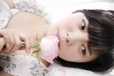 平手 2017 薔薇 6
