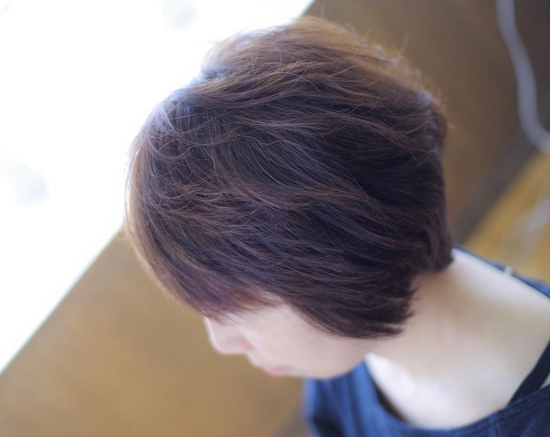 IMGP0156 (2)