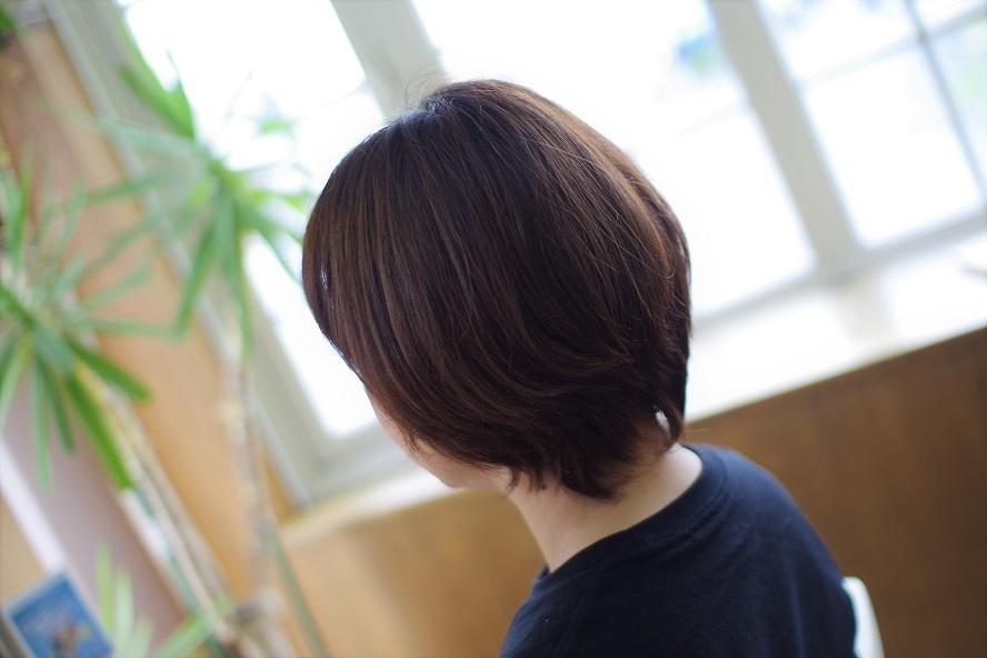 IMGP0512 (2)