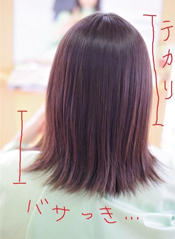 IMGP0593 (3)