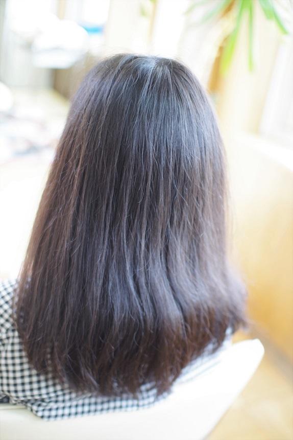 IMGP0657 (2)