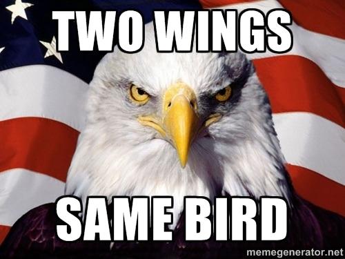 TWO WINGS SAME BIRD