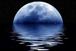 blue-moon-101119-02_convert_20140818163222_20180718001658e9a.jpg