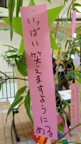 02 田島芽瑠_七夕短冊2018