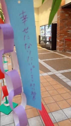 d2 村川緋杏2_七夕短冊2018