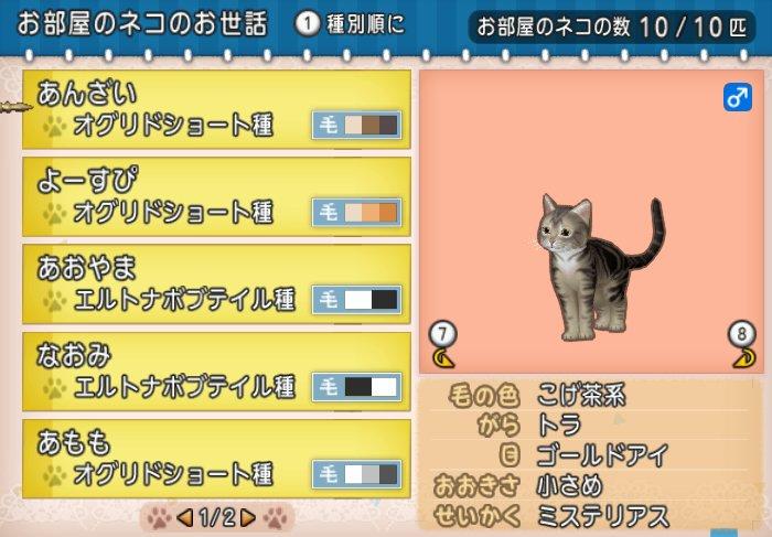 20180603ネコの名前1