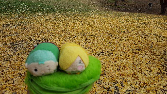 ムギムギゾサの紅葉狩り2