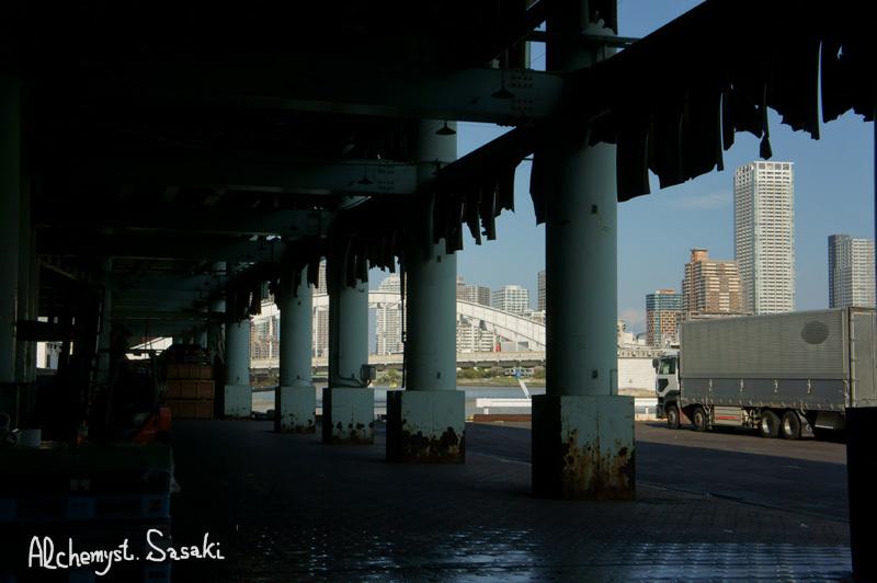 築地・魚河岸DSC01715