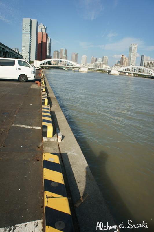 築地・魚河岸DSC01748