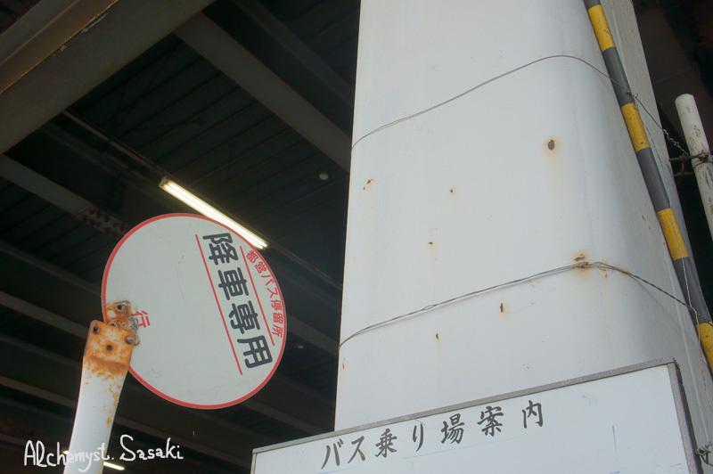築地・魚河岸DSC01834