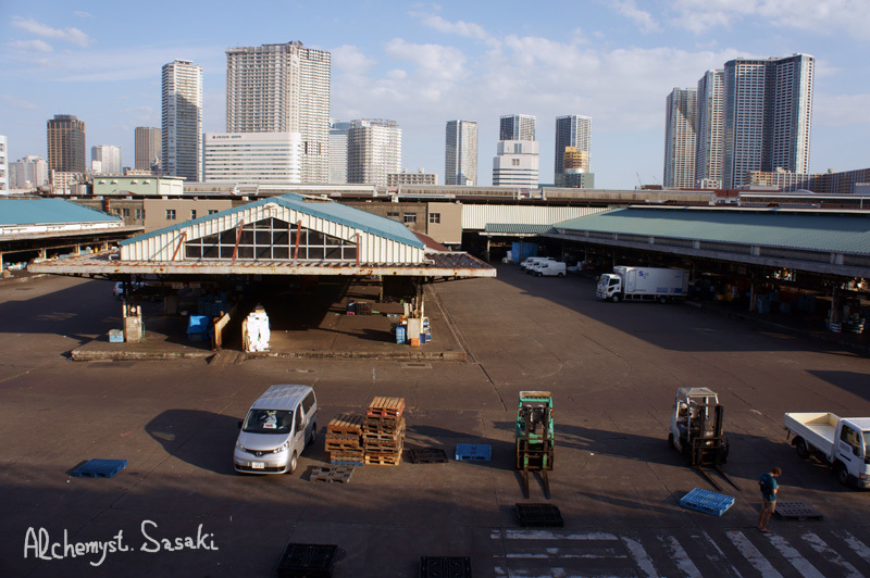 築地・魚河岸DSC01823