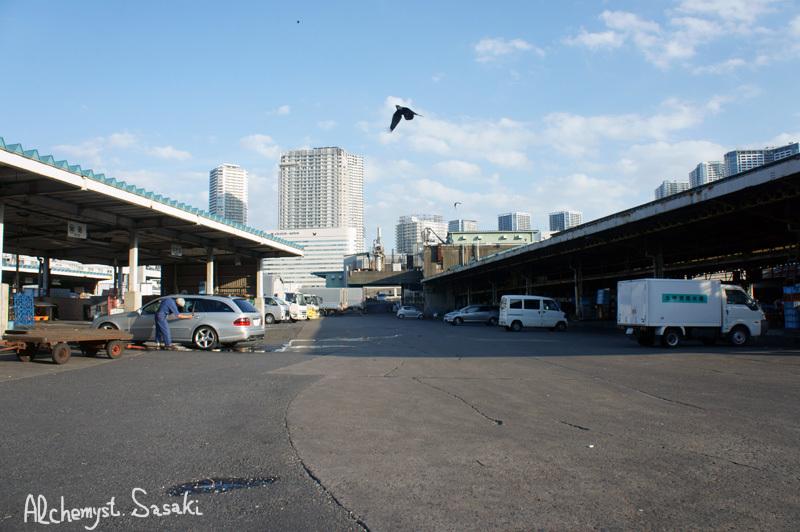 築地・魚河岸DSC01841