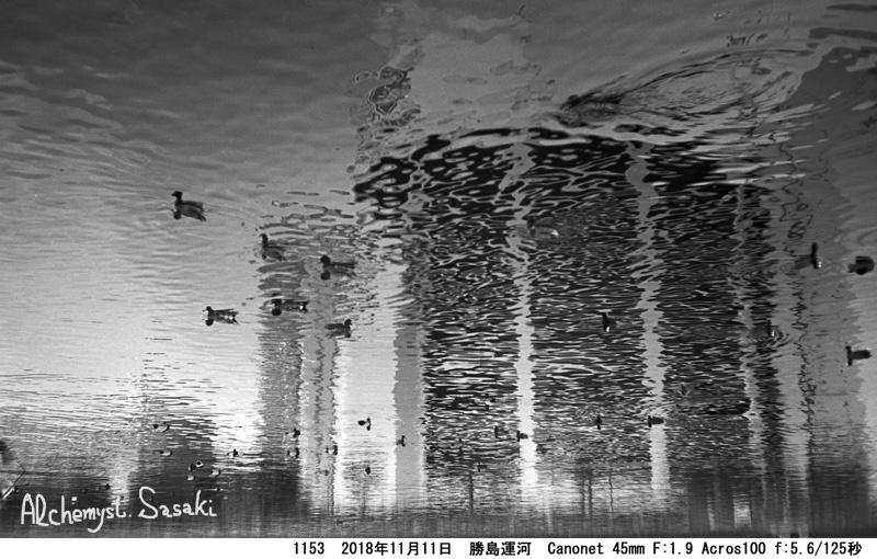 勝島運河1153-31