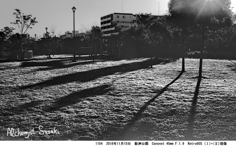 鮫洲公園1154-22
