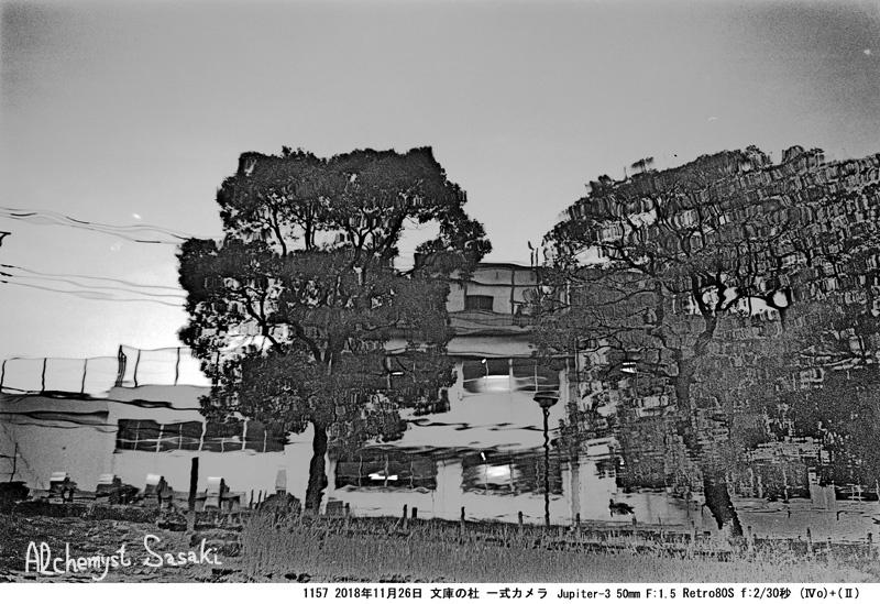 戸越公園1157-8