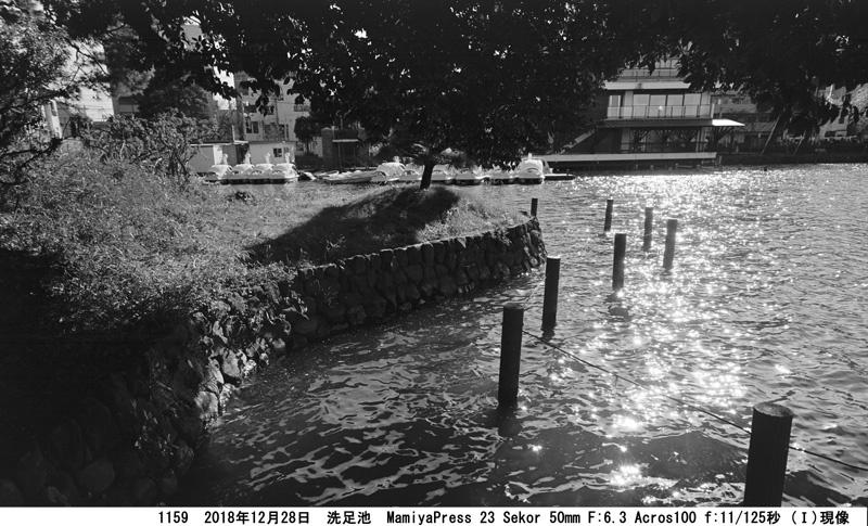 洗足池 1159-3 Ⅱ