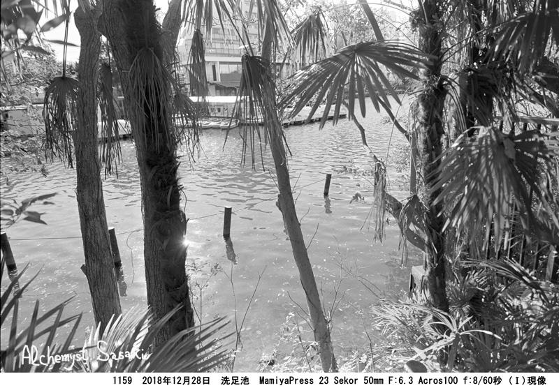 洗足池1159-2