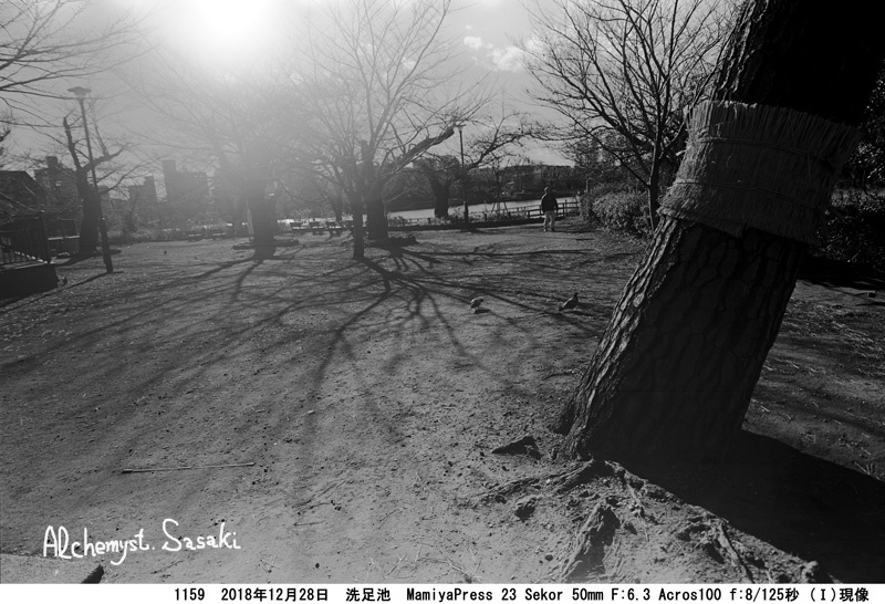 洗足池1159-8