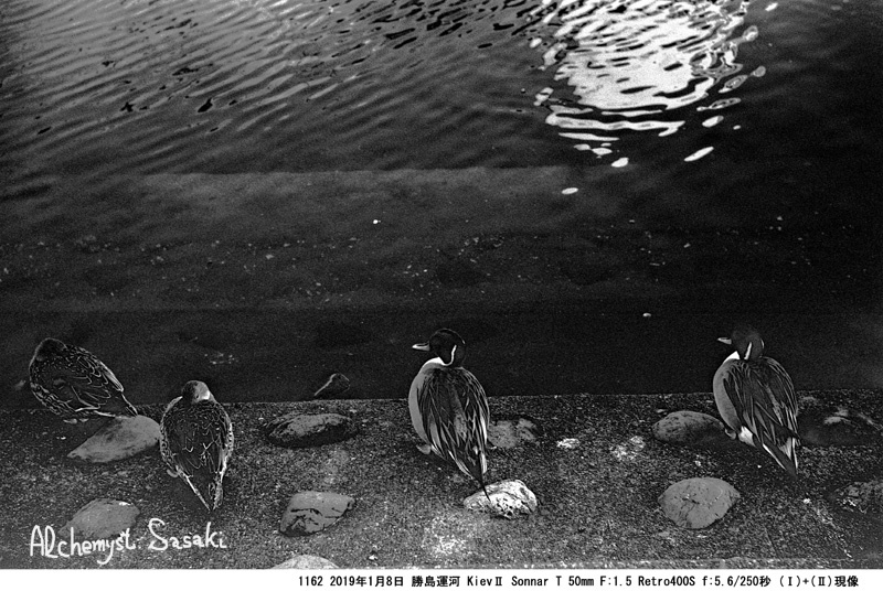 勝島運河1162-24
