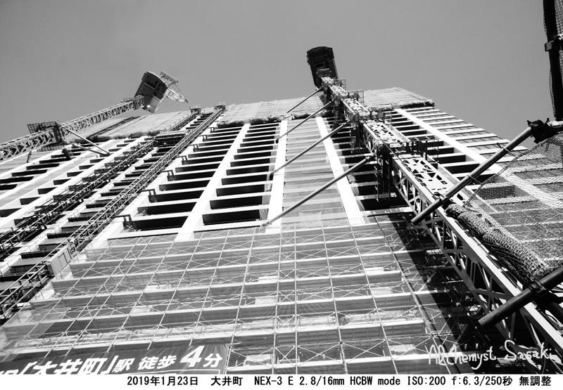 大井タワーマンションDSC05021 無調整