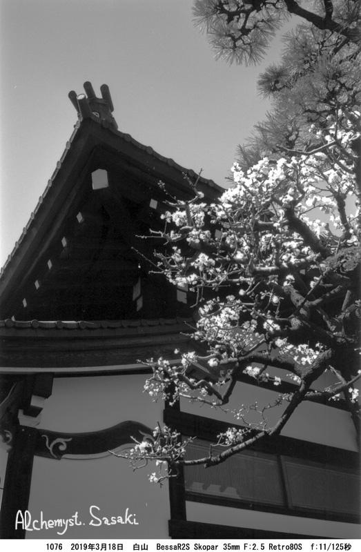 白山から上野まで1176-107