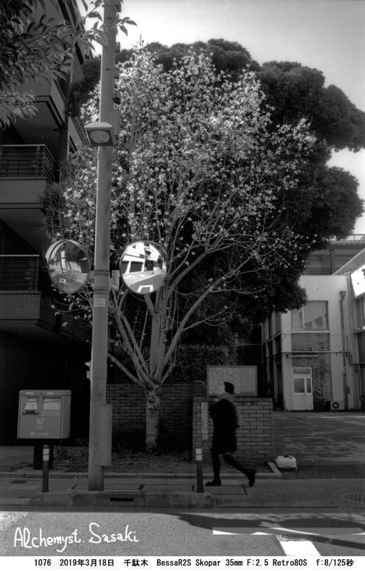 白山から上野まで1176-115