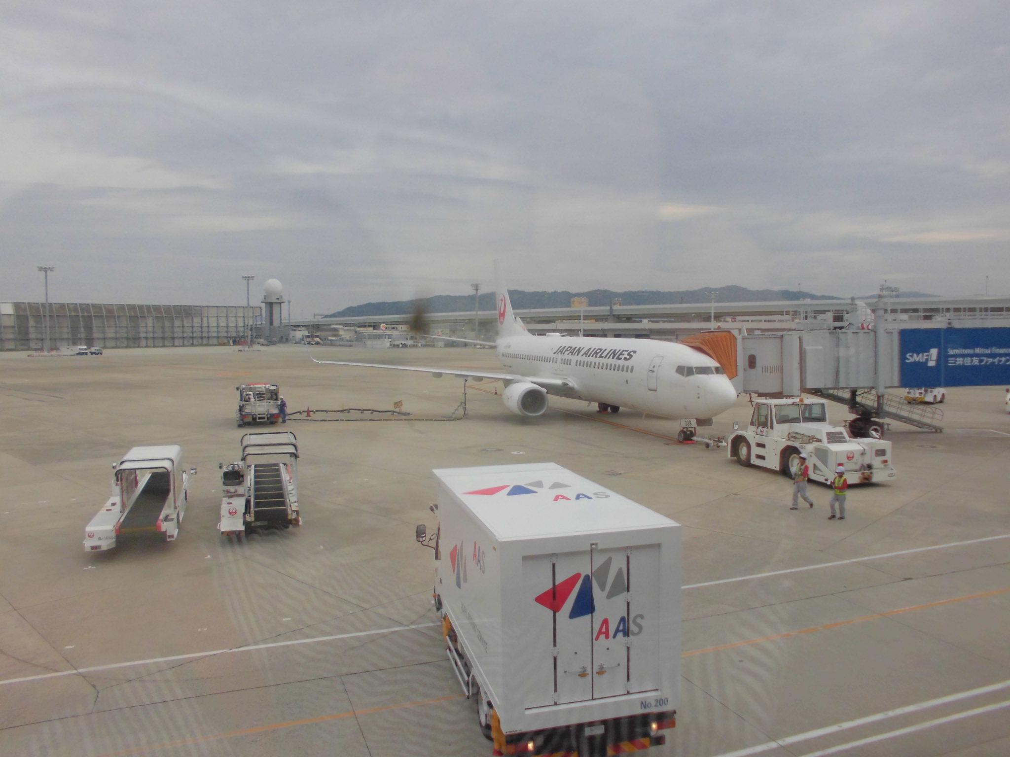 伊丹空港JAL2465便・奄美大嶋観光ガイド