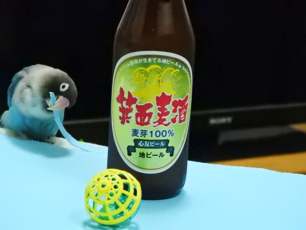 箕面地ビールDSCN0726