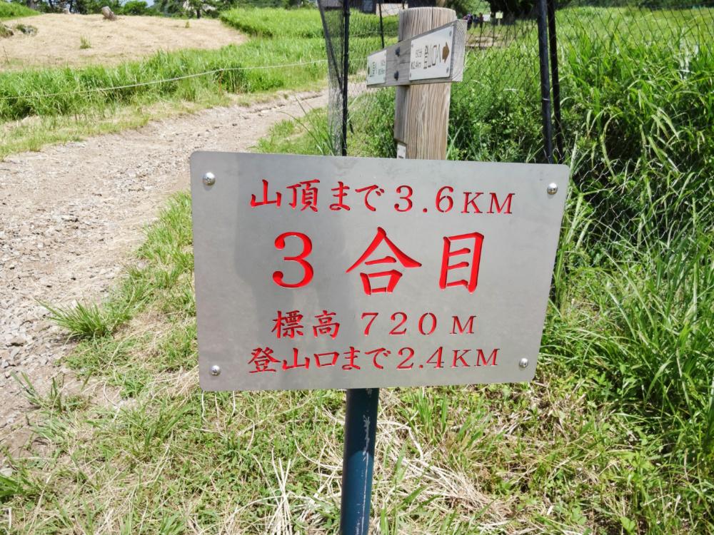 伊吹山DSC00989