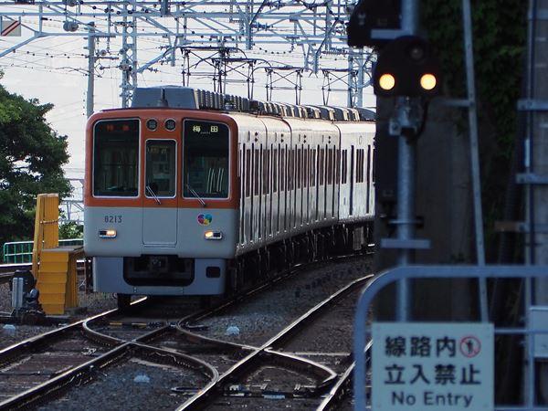 P5211872_R.jpg