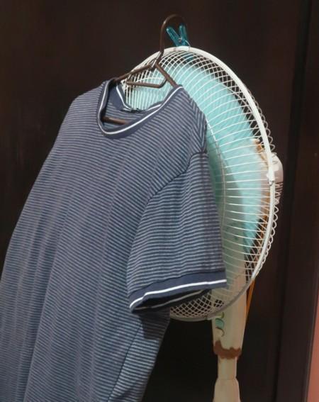 fan drier (10)