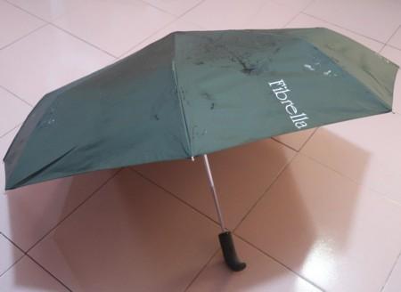 Spring umbrella (50)